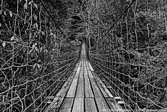 Old Suspension Bridge at Fall Creek Falls State Park