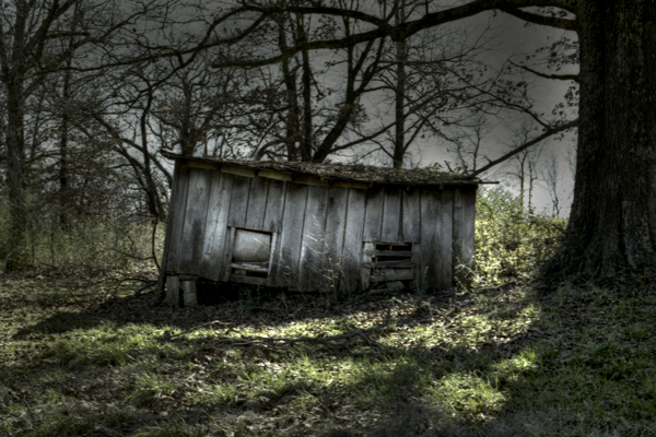 Old Shed in Rural West Tennessee