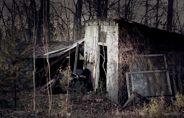 Abandoned Shed - Nashville, TN